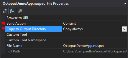 CopyOutputDirectory